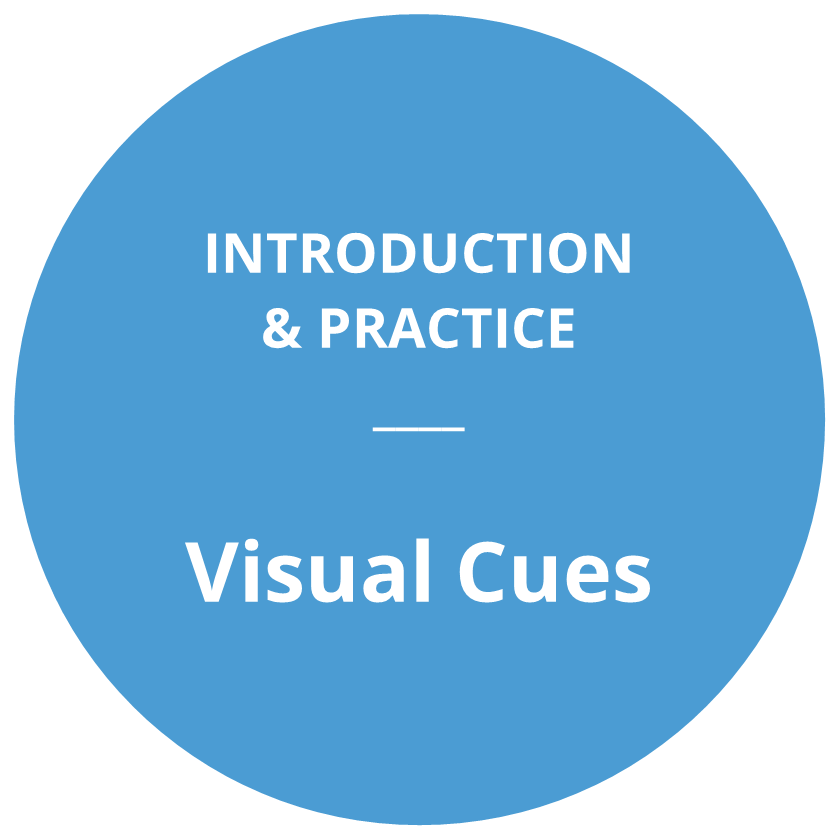 Introduction and practice: Visual Cues
